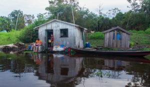 Amazônia para além das commodities e do capitalismo verde