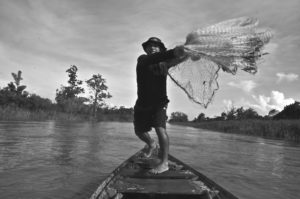 Imazon promove conservação e desenvolvimento sustentável na Amazônia