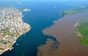 Amazônias em tempos de incertezas