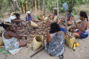 Quebradeiras de coco babaçu na Amazônia: luta em defesa das territorialidades