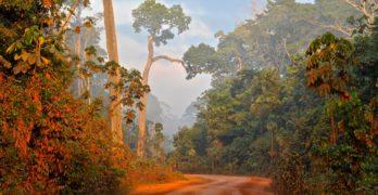 A quem pertence o futuro da Amazônia?