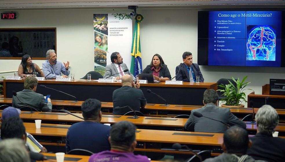 Funai e Ibama não comparecem à Comissão de Meio Ambiente e Desenvolvimento Sustentável