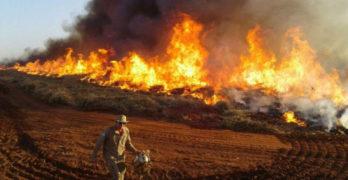 """Amazônia:  para entender o """"Dia do Fogo"""""""