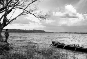 O poeta na selva: aflito, mas vivo