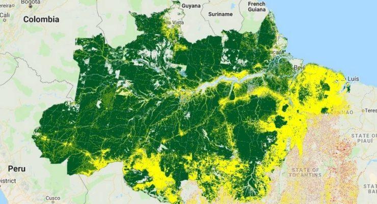 Crise ambiental é impulsionada por governo, critica pesquisador