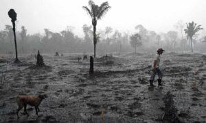 A Amazônia é uma questão de vida ou morte para todos nós. Precisamos lutar por ela