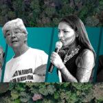 O pensamento ecológico e as mulheres