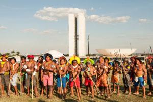 O Espírito da Amazônia versus O Espírito do Capitalismo