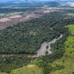 Medo do coronavírus enfraquece proteção da Amazônia pouco antes da temporada de queimadas