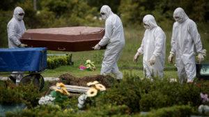 Ofensiva contra a floresta: uma pandemia incontrolável