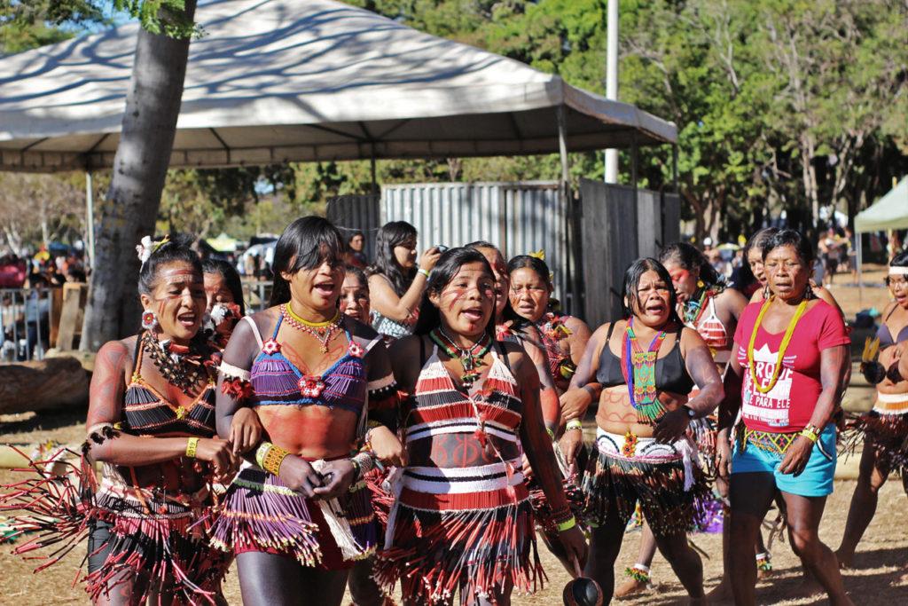 Literatura e projeto de nação: os românticos índios da Amazônia