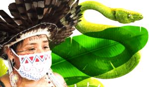 Vidas verdes importam: um manifesto