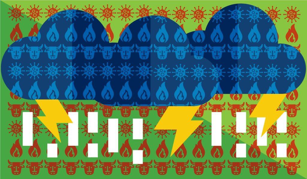 Quem tem medo do desmatamento? Pandemia e pandemônio na floresta