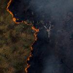 queimada 2020 amazônia economia verde