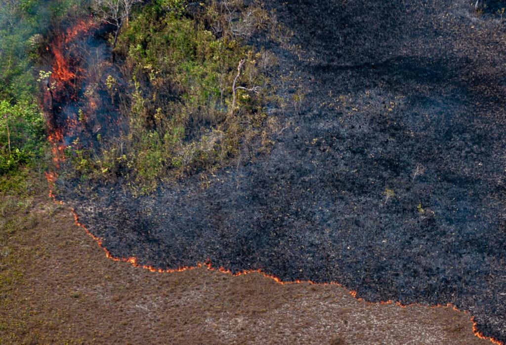 Amazônia: um novo ponto de virada?