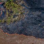 queimadas amazonia virada