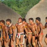 amazonia now webinar