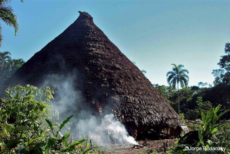 zuruahã amazônia bodankzy