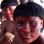 zuruahã amazônia