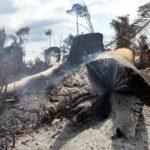 grilagem desmatamento amazônia