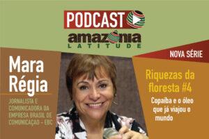Riquezas da Floresta #4: Copaíba e o óleo que viajou o mundo