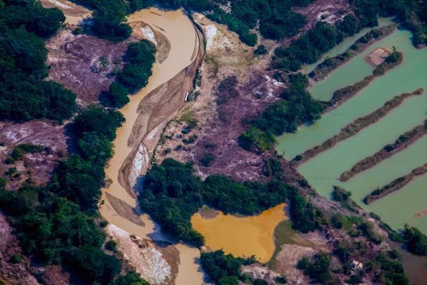 mineração altamira pará