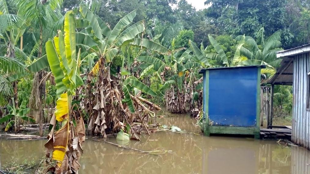 carauari Amazonas