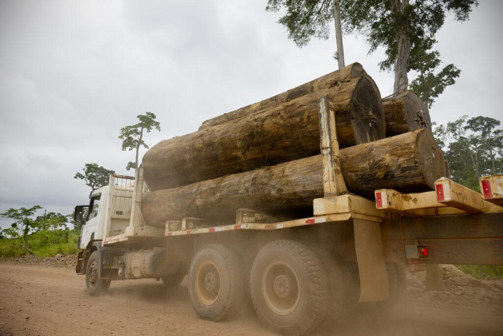 Não podemos respirar! A urgência de uma política socioambiental ética e sustentável para o Brasil