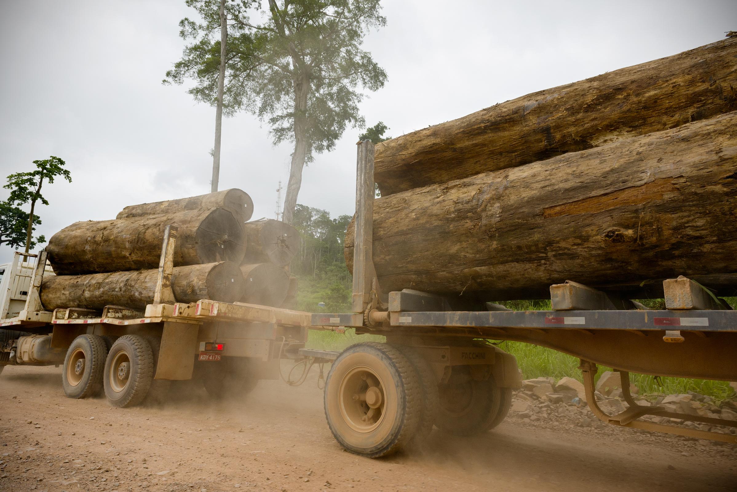 política socioambiental madeira