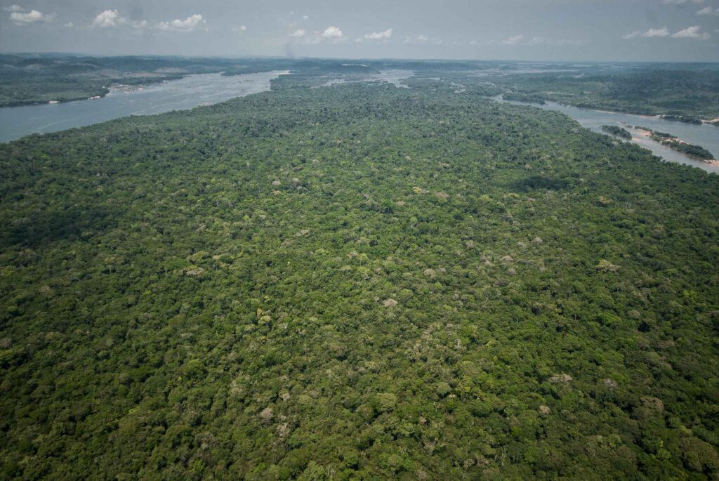 Volta do Xingu coberta de floresta