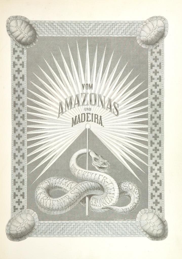 Capa da edição alemã do livro. Há uma serpente desenhada embaixo de raios de luz.