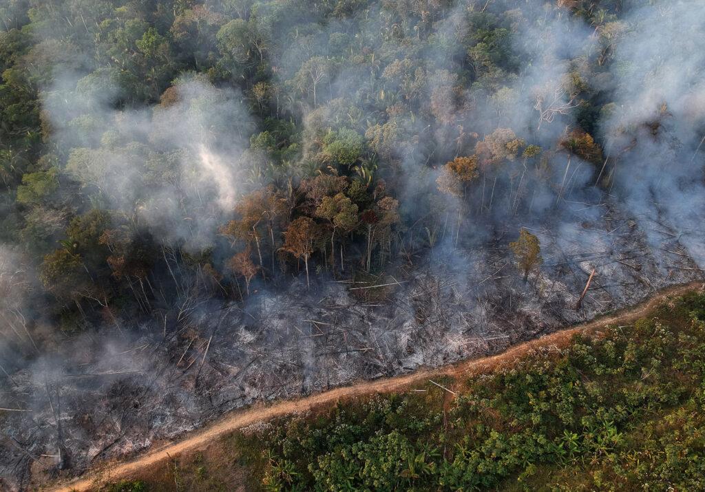 Uma linha diagonal queimada divida a área devastada pelo fogo e uma área verde. Amazônia (ainda) queima