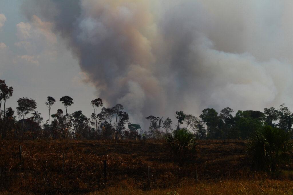 Fumaça na linha do horizonte na floresta amazônica. Amazônia (ainda) queima