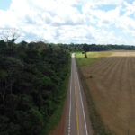 Image of a forest on the right, and an empty and dry land on the left
